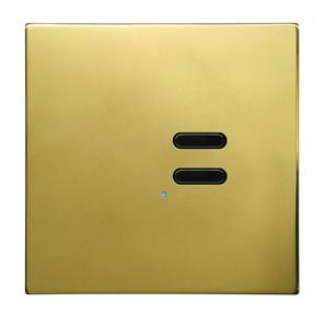 Wise Switch 2 Channel Polished Brass 3V
