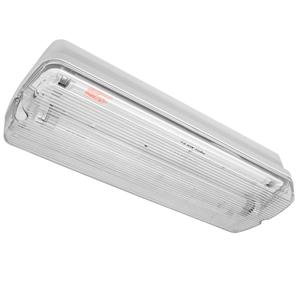 Bulkhead T5 Emergency Maintained White 8W