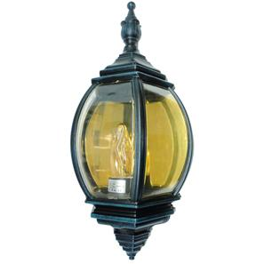 Lantern Wall 240V 100W Black Green