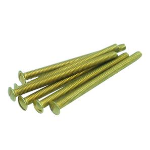 Screw Brass 50mm
