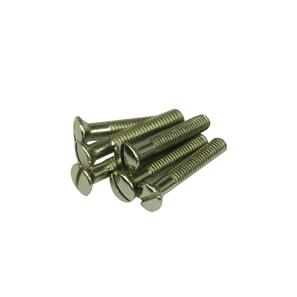 Screw Nickel 25MM