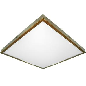 Slim Square 2D Emergency 240V Bronze 28W