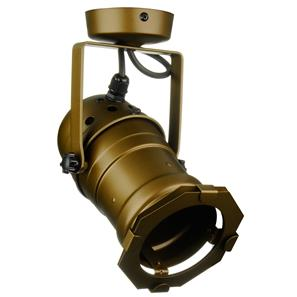 PAR30 Theatre Lights 240V 100W Bronze