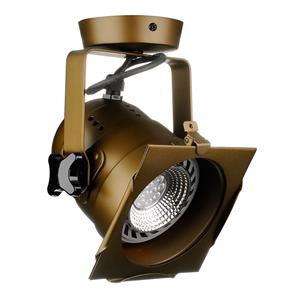 PAR38 Theatre Lights 240V 120W Bronze