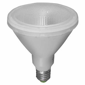 LED PAR38 External Lamp ES 15W (=120W) Clear