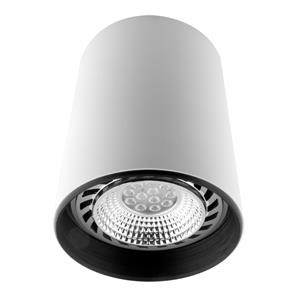 Can Downlight Large White 150W
