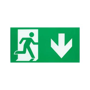 LED Emergency Exit Legend Down