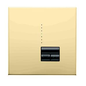 Rania Master 1 Gang Dimmer Bright Brass 450W