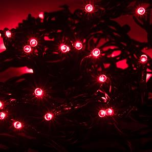 Master Twinkle Light 5m (With Controller), 180 Lights, Outdoor/Indoor, 24V Red Green Cable