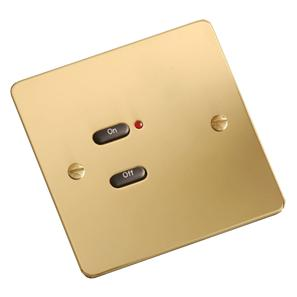 RAKO Face Plate 2 Button Polished Brass