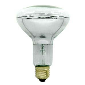 ES Diffused Reflector Lamps 100W