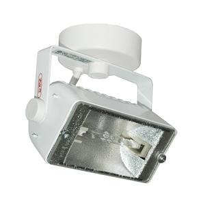 Flood 150 Spot 240V 150W White