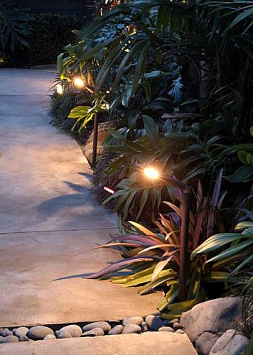 Garden Spread or Diffused Lighting